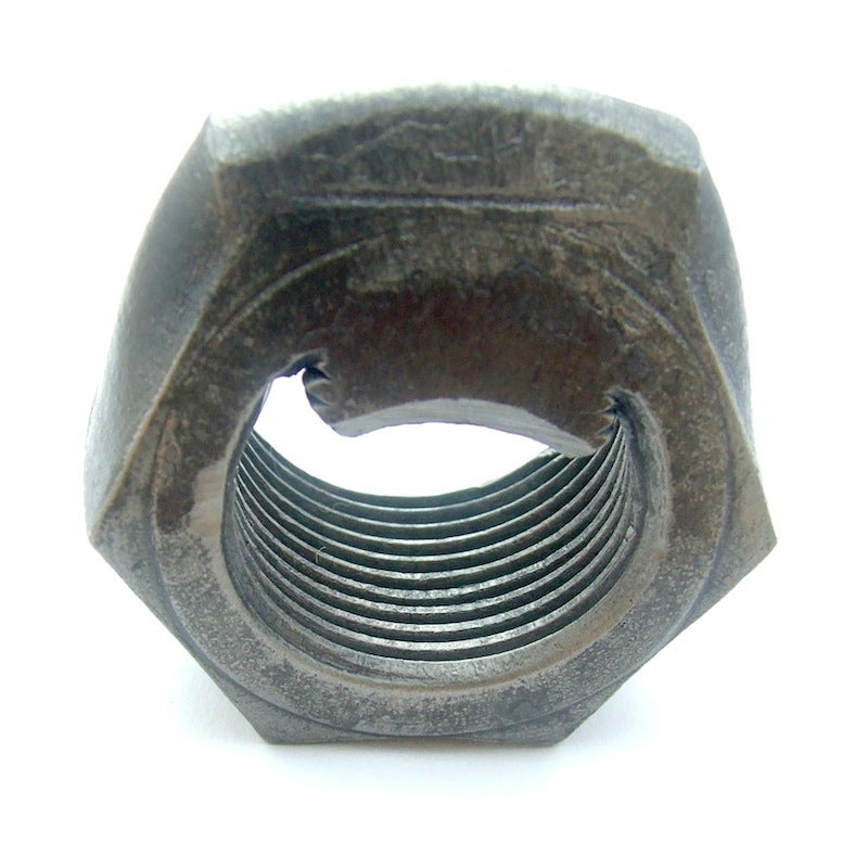 Image of The Beer Nut