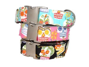 Image of Sugar Skulls - Martingale Collar in the category  on Uncommon Paws.