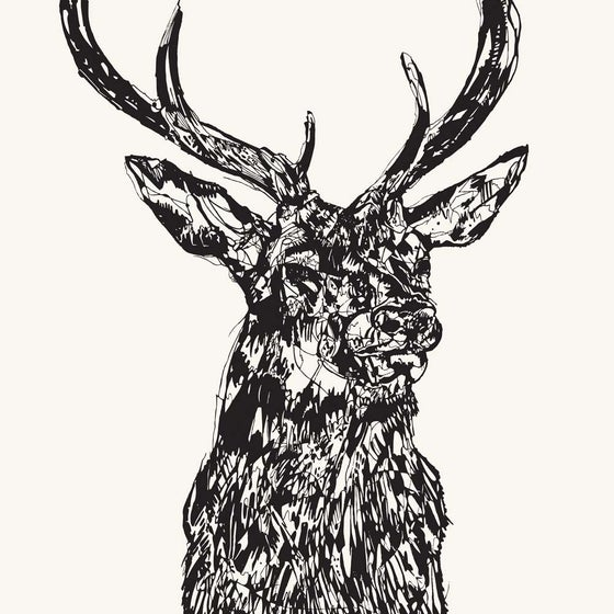 Image of STAG HEAD MMXIV