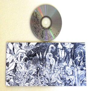 Image of VISITATIONS ~ UNTITLED ~ cd (TIME-LAG 037)