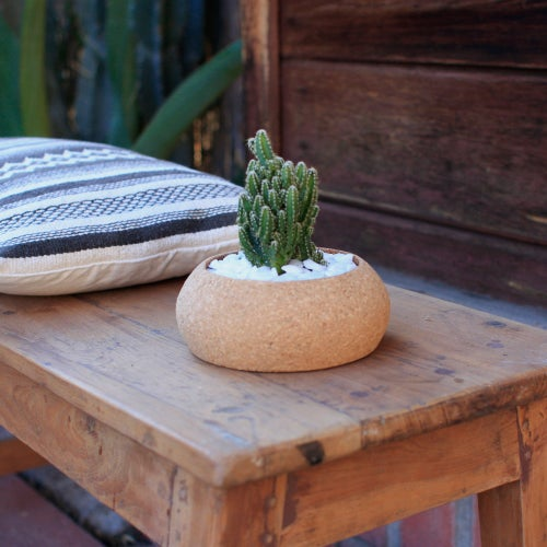 Image of Medium Cork Planter