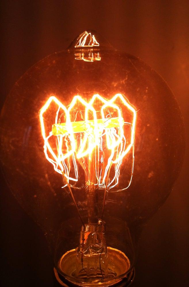 Image of Human Anatomy Lamp
