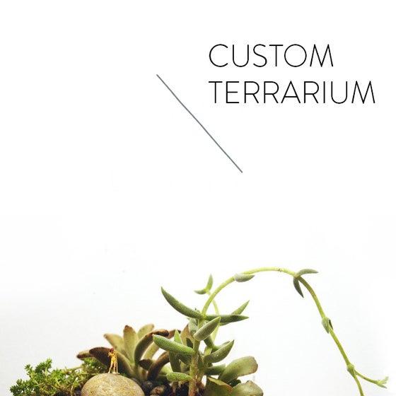 Image of CUSTOM TERRARIUM