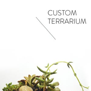 Image of custom terrarium