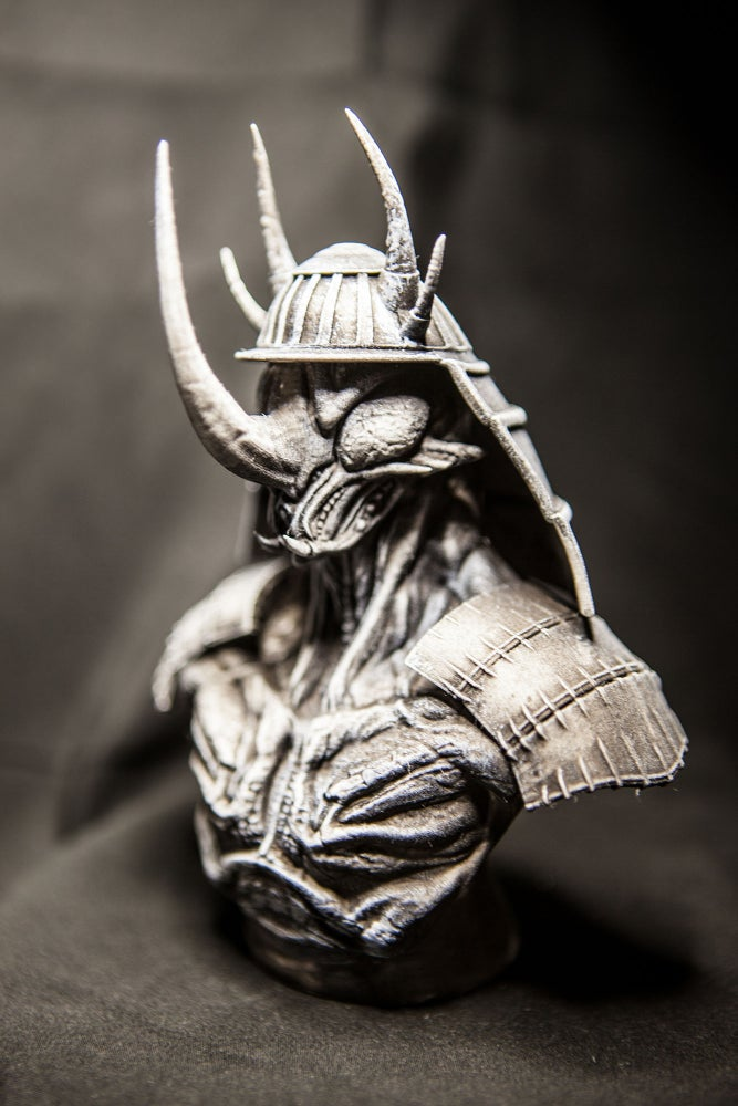 Image of Insecta Warrior