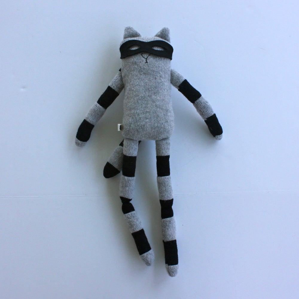 Image of Little Bandit Raccoon