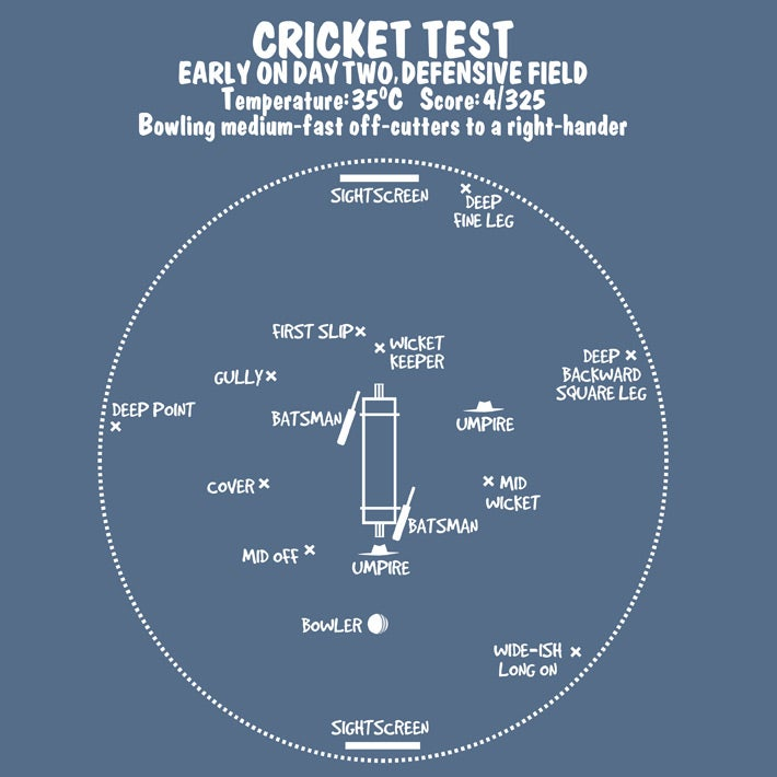 Image of Cricket Test