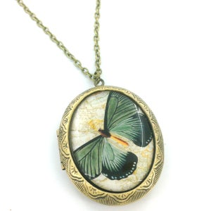 Image of Vintage Style Butterfly Entomology Locket Necklace  GB