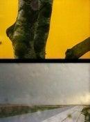 Image of Yellow Landing- Print