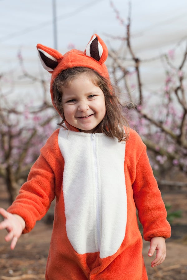 Image of Fox Costume  תחפושת שועל