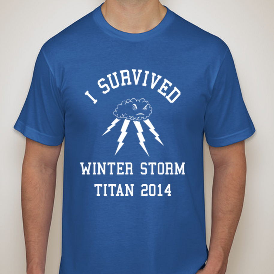 Image of I SURVIVED the STORM 2014