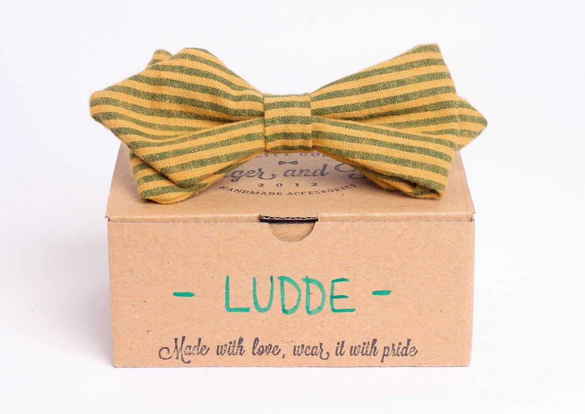 Image of Ludde