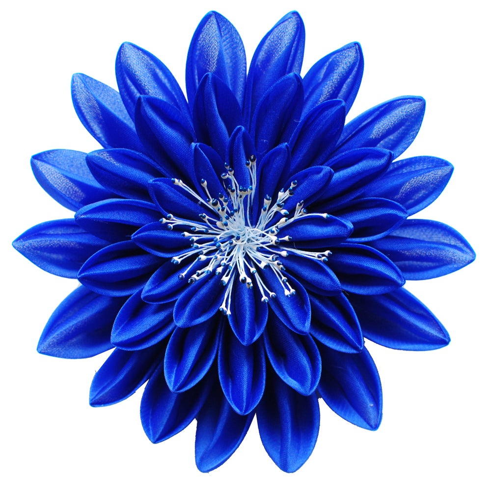 Image of Blue On Blue