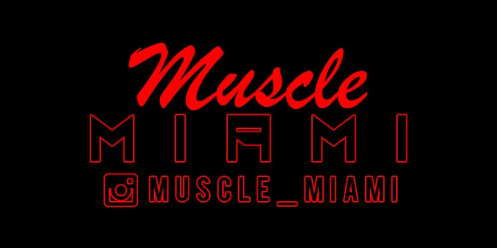Image of Muscle Miami Sticker Single Color