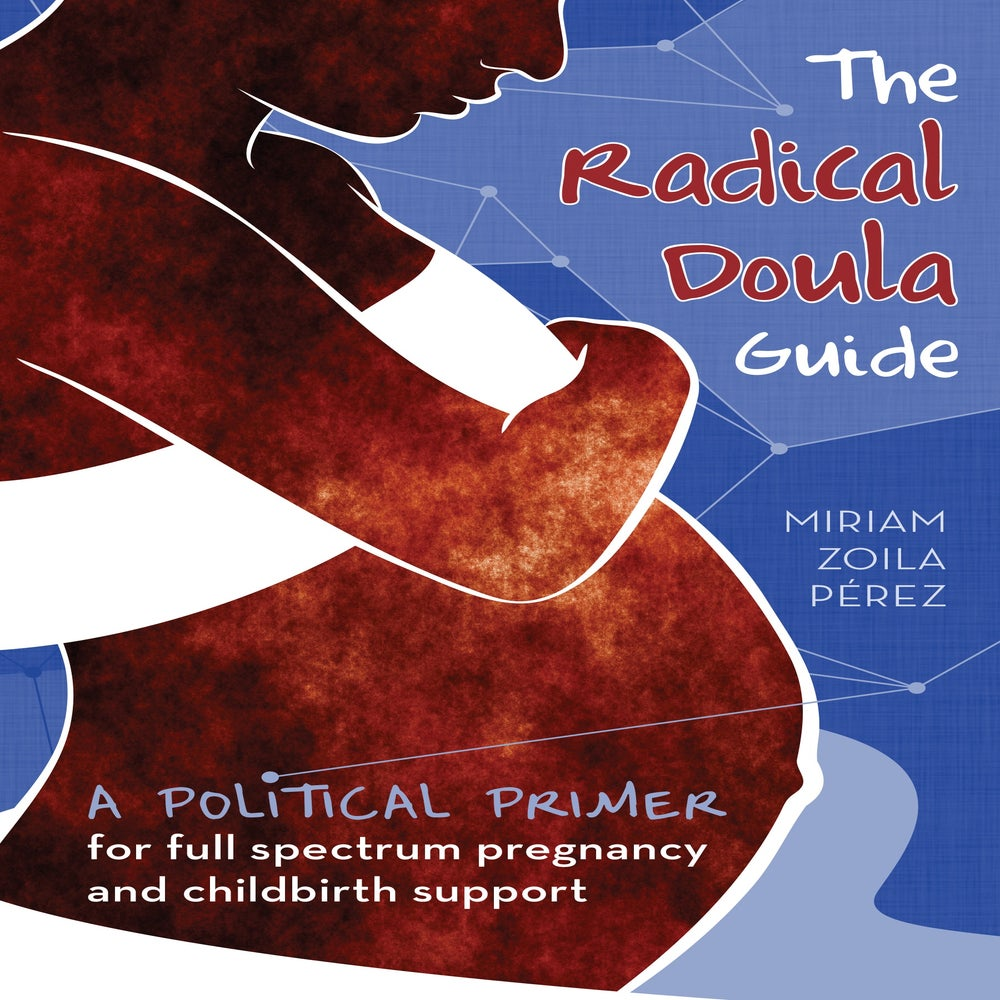 Cover of Radical Doula Guide