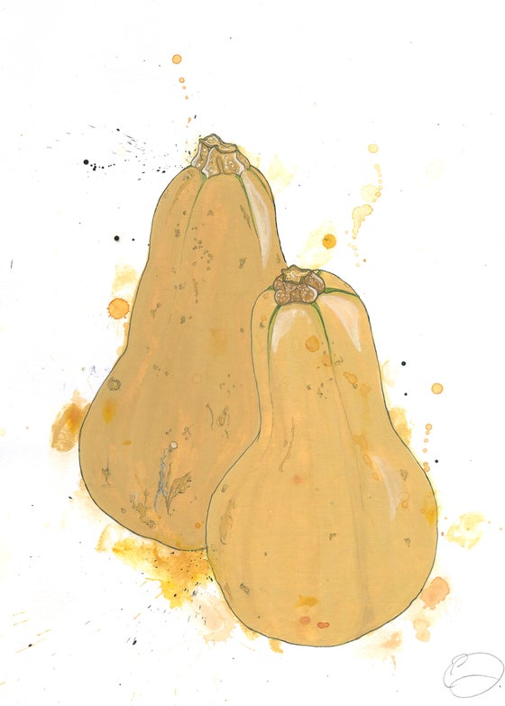 Image of Butternut Squash