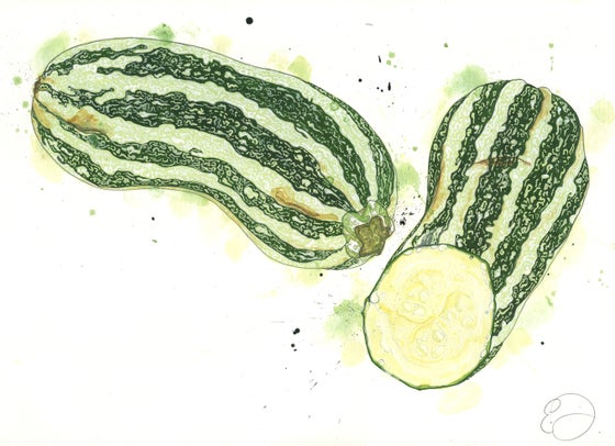 Image of Marrows