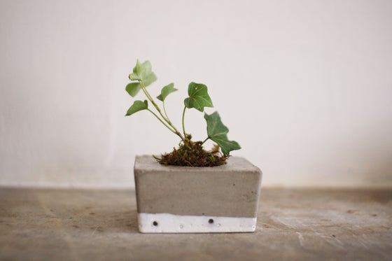 Image of tiny concrete planter