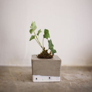 Image of tiny concrete planter