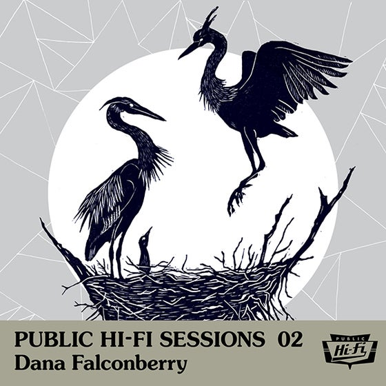 Image of Public Hi-Fi Sessions 02 - Dana Falconberry