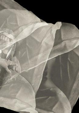 Image of Tissues & Bone — PAMPHLET