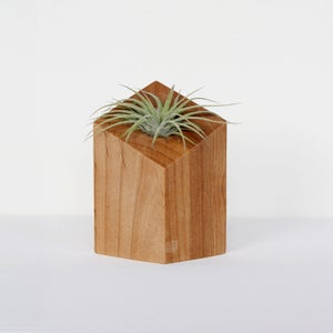Image of Air Plant Holder - Diamond Natural - <i>Plant Included</i>