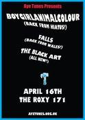 Image of Aye Tunes Presents: Boygirlanimalcolour / FALLS / The Black Art
