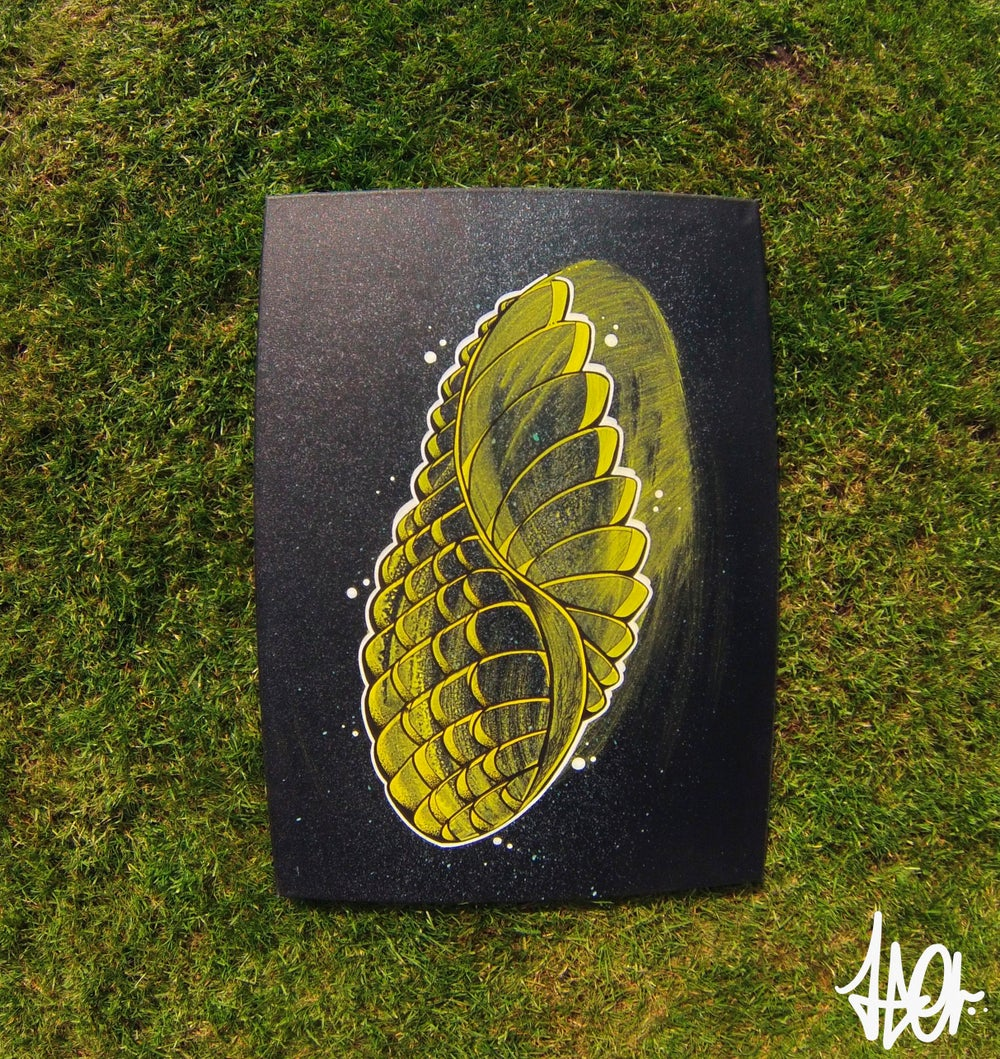 Image of Feather Pinecone