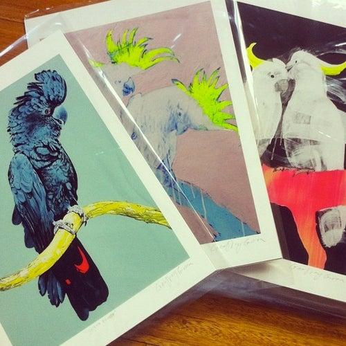 Image of Joseph Banksii Print