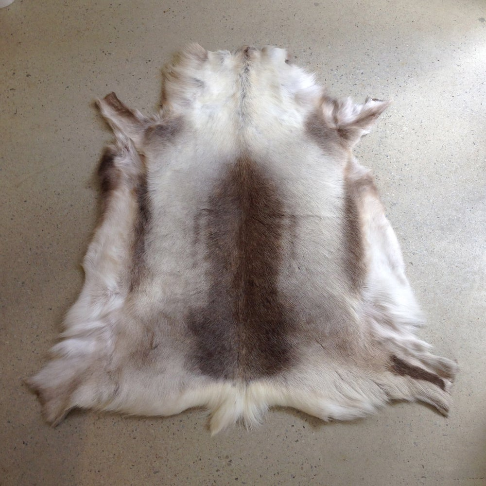 Image of Reindeer Hide