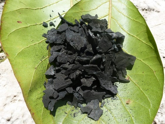 Image of Coconut Charcoal