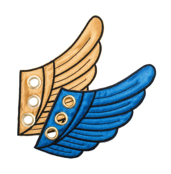 Image of Blue & Gold Wing Kicks