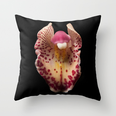 Image of Orchid, Garden, Outdoor Pillow, Photo Art, Botanical.
