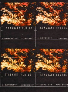 Image of 15 Stagnant Fluids