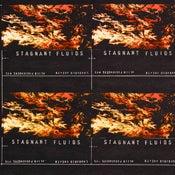 Image of 15 Stagnant Fluids