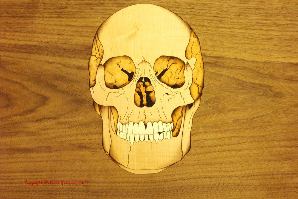 Image of Item No. 123. Skull.