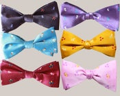 Image of Bow-tie Elements of Harmony Set