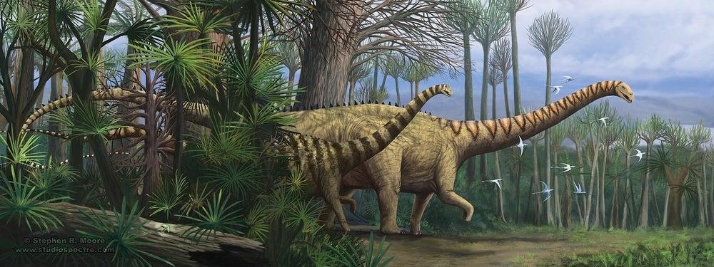 "Image of ""2 beams"" Diplodocus carnegii"