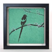 Image of Sweet Magpie on Teal