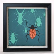 Image of Beetle on Teal