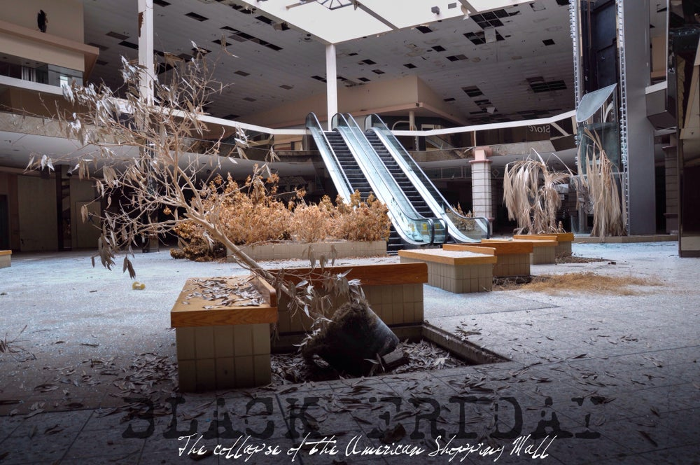 Image of (eBook) Black Friday-The collapse of the American shopping Mall (2014)