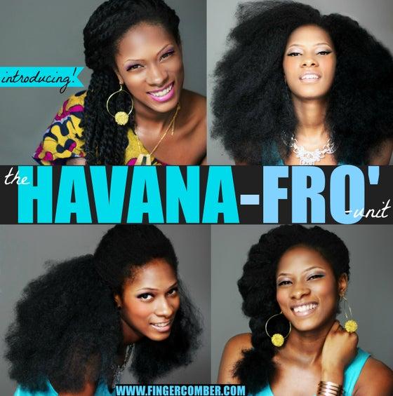 Image of the HAVANA-FRO unit