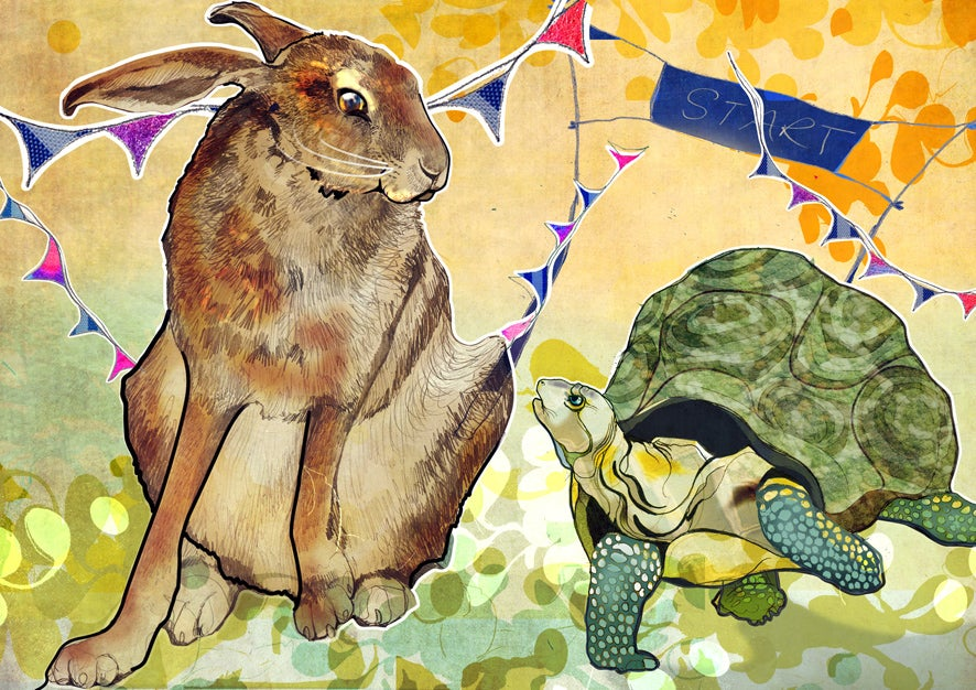 Image of The Hare and The Tortoise