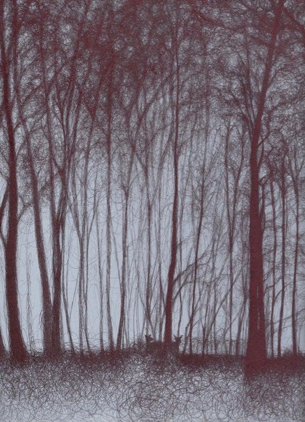 Image of Night's Fallen