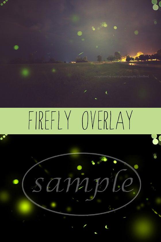 Image of Firefly Overlay