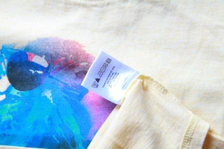 Image of Tshirt manches courtes garçon Soft Gallery Norman Summer Leo