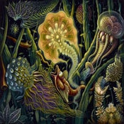 "Image of ""LIGHT CREATURE"", Open Edition Giclee Print"