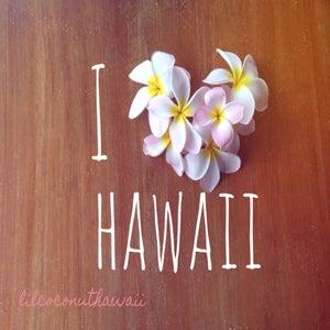 Image of I Heart Hawaii Clutch