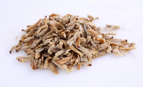 Image of Thai Edible Bamboo Worms 100 grams
