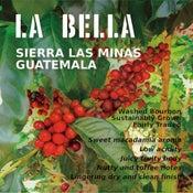 Image of La Bella, Sierra Las Minas, Guatemala